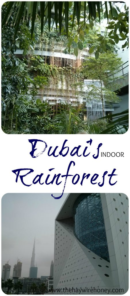 Dubai travel. This indoor rainforest is a great family activity in downtown.