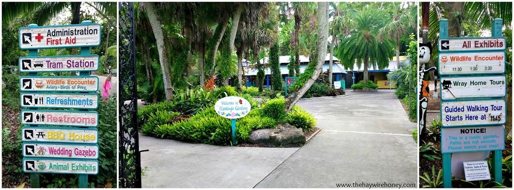 Why You Should Visit Flamingo Gardens - The Haywire Honey